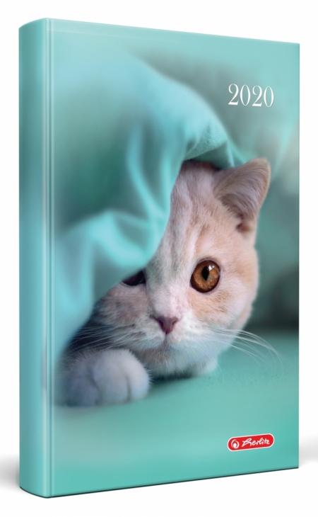 AGENDA DATATA RO A5, 352 PAGINI + 16 PAGINI ZENTANGLE, COPERTA BURETATA, MOTIV LITTLE CAT, 2020