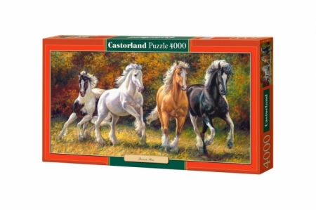 PUZZLE 4000 PCS BORN TO RUN